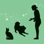 ペットの資格